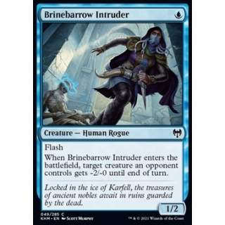 Brinebarrow Intruder