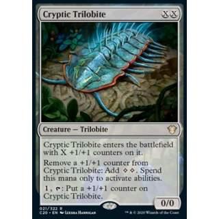 Cryptic Trilobite