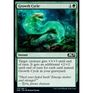 Growth Cycle - FOIL