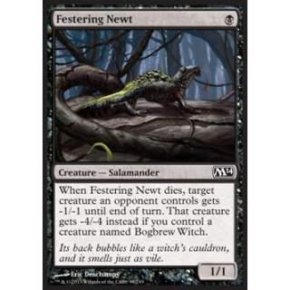 Festering Newt