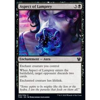 Aspect of Lamprey