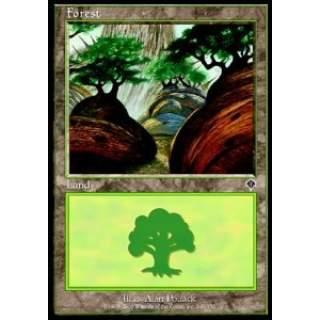 Forest (V.3)