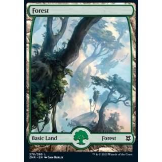 Forest (V.1) - FOIL