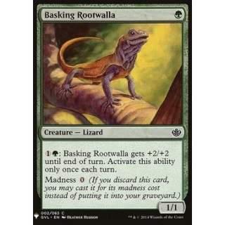 Basking Rootwalla
