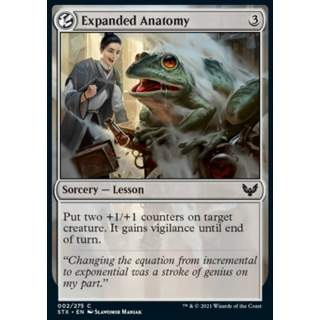 Expanded Anatomy - FOIL