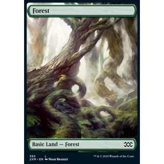 Forest (V.2) - PROMO