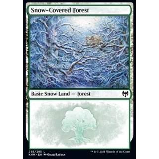 Snow-Covered Forest (V.2)