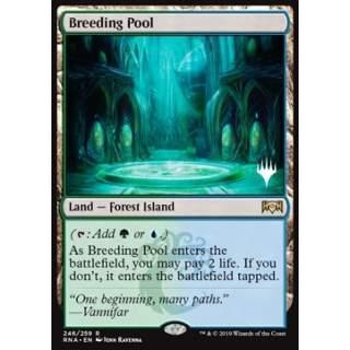 Breeding Pool - PROMO