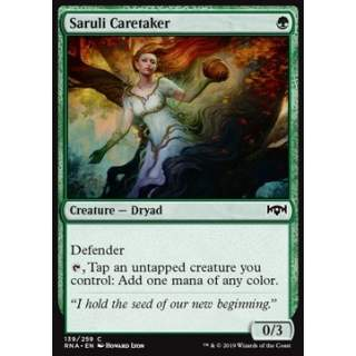 Saruli Caretaker